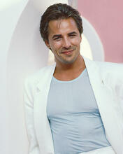 This is an image of 255318 Don Johnson Photograph & Poster