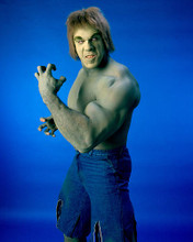 This is an image of 256429 Lou Ferrigno Photograph & Poster