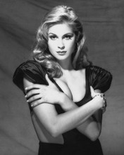 This is an image of 174203 Kelly Rutherford Premium Photograph & Poster