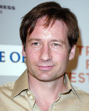 This is an image of 262167 David Duchovny Photograph & Poster