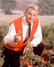 This is an image of 262692 Eddie Albert Photograph & Poster