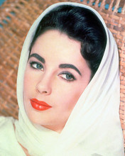 This is an image of 264886 Elizabeth Taylor Photograph & Poster