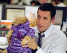 This is an image of 255110 Adam Sandler Photograph & Poster