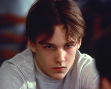 This is an image of 256255 Brad Renfro Photograph & Poster
