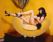 This is an image of 263383 Julie Strain Premium Photograph & Poster