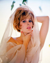 This is an image of 265733 Jill St. John Photograph & Poster