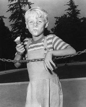This is an image of 179272 Dennis the Menace Photograph & Poster