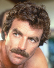This is an image of 266521 Tom Selleck Photograph & Poster