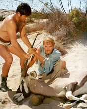 This is an image of 267089 Sands of the Kalahari Photograph & Poster