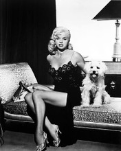 This is an image of 179521 Diana Dors Photograph & Poster