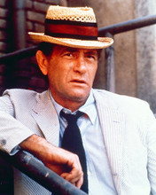 This is an image of 267012 Darren McGavin Photograph & Poster