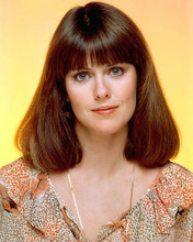 This is an image of 267307 Pam Dawber Photograph & Poster