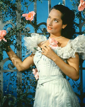 This is an image of 267463 Merle Oberon Photograph & Poster