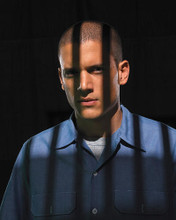This is an image of 271171 Wentworth Miller Photograph & Poster