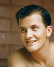 This is an image of 271432 Pat Boone Photograph & Poster