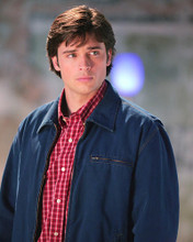 This is an image of 275341 Tom Welling Photograph & Poster