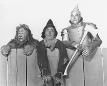 This is an image of 176329 The Wizard of Oz Photograph & Poster