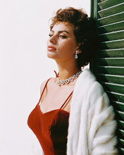 This is an image of 243411 Sophia Loren Photograph & Poster