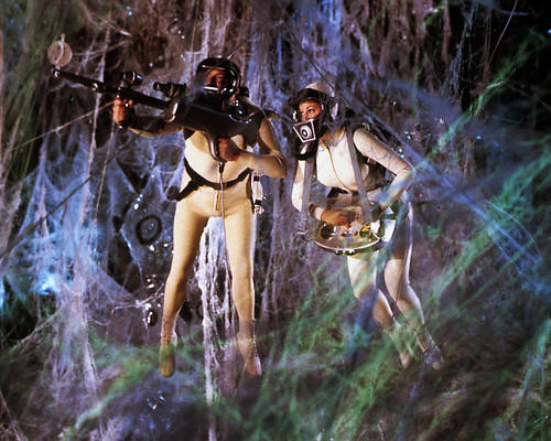 This is an image of Photograph & Poster of Fantastic Voyage 284211