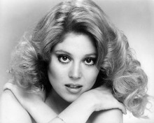 This is an image of Photograph & Poster of Audrey Landers 195142