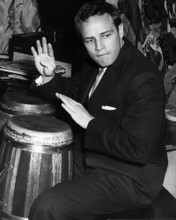 This is an image of Photograph & Poster of Marlon Brando 102801