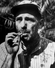 This is an image of Photograph & Poster of Humphrey Bogart 102831