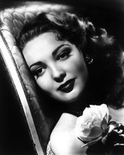 This is an image of Photograph & Poster of Linda Darnell 102849
