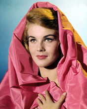 This is an image of Photograph & Poster of Ann-Margret 298292