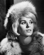 This is an image of Photograph & Poster of Senta Berger 102877