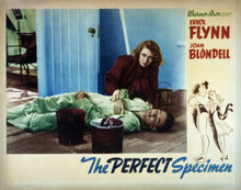 This is an image of Vintage Reproduction Lobby Card of The Perfect Specimen 295233