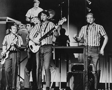 This is an image of Photograph & Poster of The Beach Boys 190358