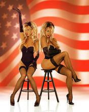 This is an image of Photograph & Poster of Barbi Twins 253950