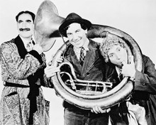 This is an image of Photograph & Poster of The Marx Brothers 12444