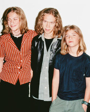 This is an image of Photograph & Poster of Hanson 236746