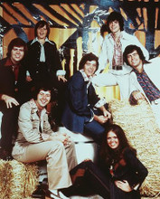 This is an image of Photograph & Poster of The Osmonds 244551