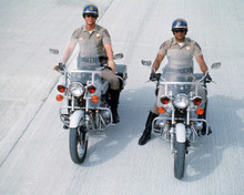 This is an image of Photograph & Poster of Chips 298319