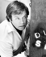 This is an image of Photograph & Poster of Robert Wagner 102990