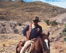 This is an image of Photograph & Poster of John Wayne 298375