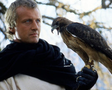 This is an image of Photograph & Poster of Rutger Hauer 298580