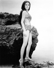 This is an image of Photograph & Poster of Linda Harrison 103187