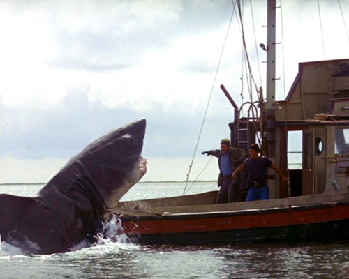 This is an image of Photograph & Poster of Jaws 298567
