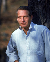 This is an image of Photograph & Poster of Paul Newman 298530