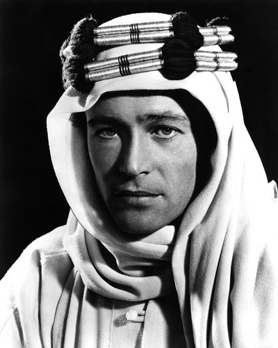 This is an image of Photograph & Poster of Peter Otoole 103127