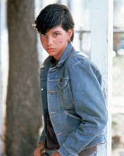 This is an image of Prints & Posters of Ralph Macchio 298645