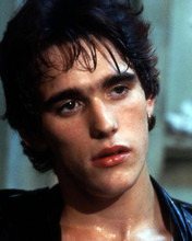 This is an image of Prints & Posters of Matt Dillon 298672