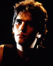 This is an image of Prints & Posters of Matt Dillon 298674
