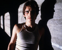 This is an image of Prints & Posters of Matt Dillon 298676