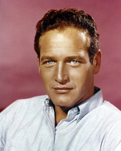 This is an image of Prints & Posters of Paul Newman 298701