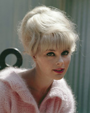 This is an image of Prints & Posters of Elke Sommer 298743