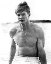 This is an image of Prints & Posters of Jan-Michael Vincent 103238